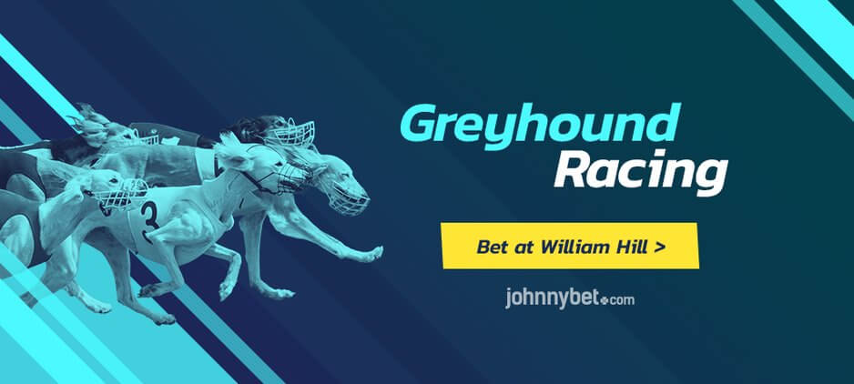 Greyhound racing william hill