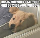 Outside your window memes
