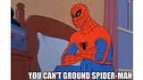 Cant ground spiderman