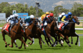 Caulfield Cup 2017 betting tips