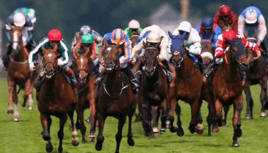 2018 Cheltenham watch online stream