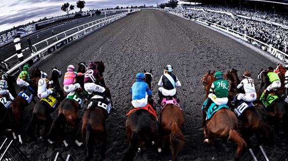 Best legal online betting horse racing site